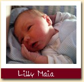 Lilly Maia